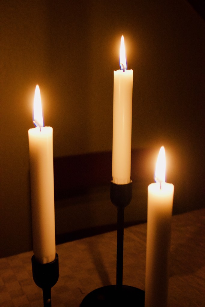 Power cut by huvesaker