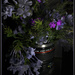 Magic coffee mug....   (Best on black) by sdutoit