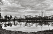 27th Dec 2019 - Fishing Lake...