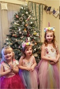 26th Dec 2019 - My granddaughters with their unicorn dresses and princess dress on