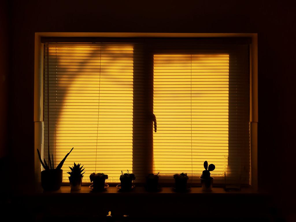 Morning has broken... by m2016
