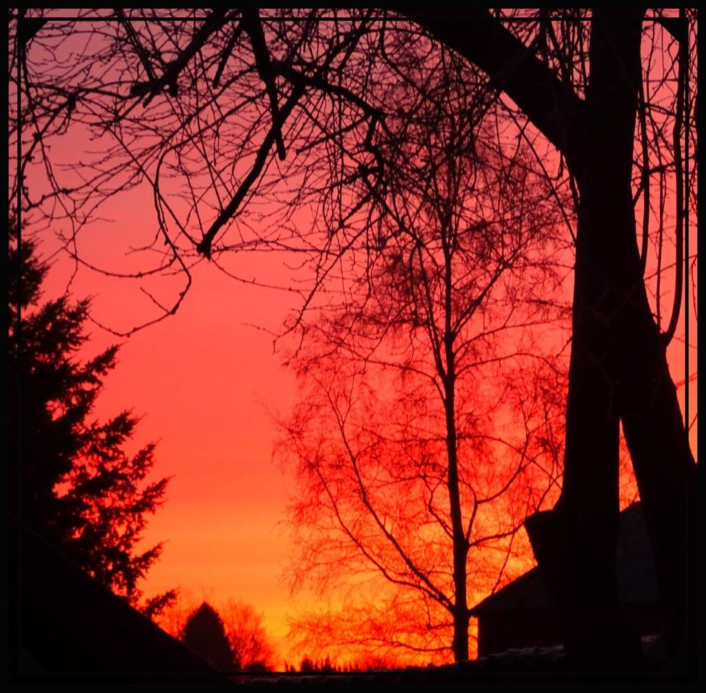 Saturday's sunrise .. by gijsje