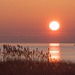 Simple sunrise by mccarth1