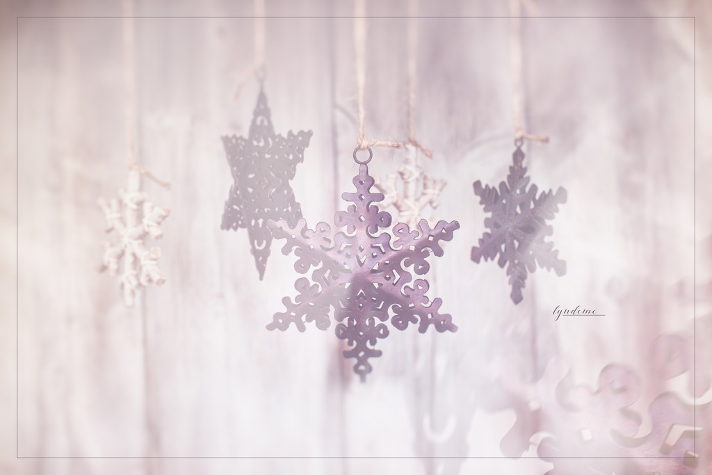 I Like Snowflakes by lyndemc