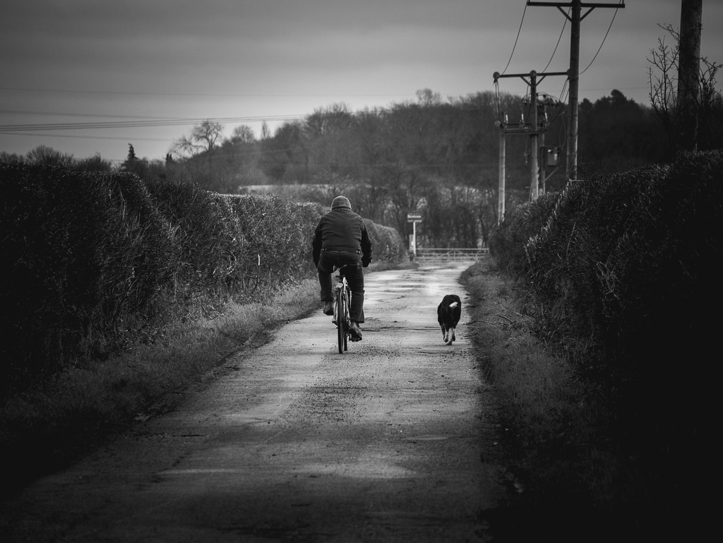 Man and Dog by newbank