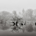 Submerged trees... by vignouse