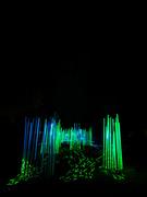 29th Dec 2019 - Morton Arboretum Illuminations