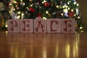 31st Dec 2019 - Peace