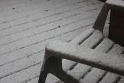 31st Dec 2019 - Winter's Return