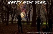 1st Jan 2020 - Fireworks in the park