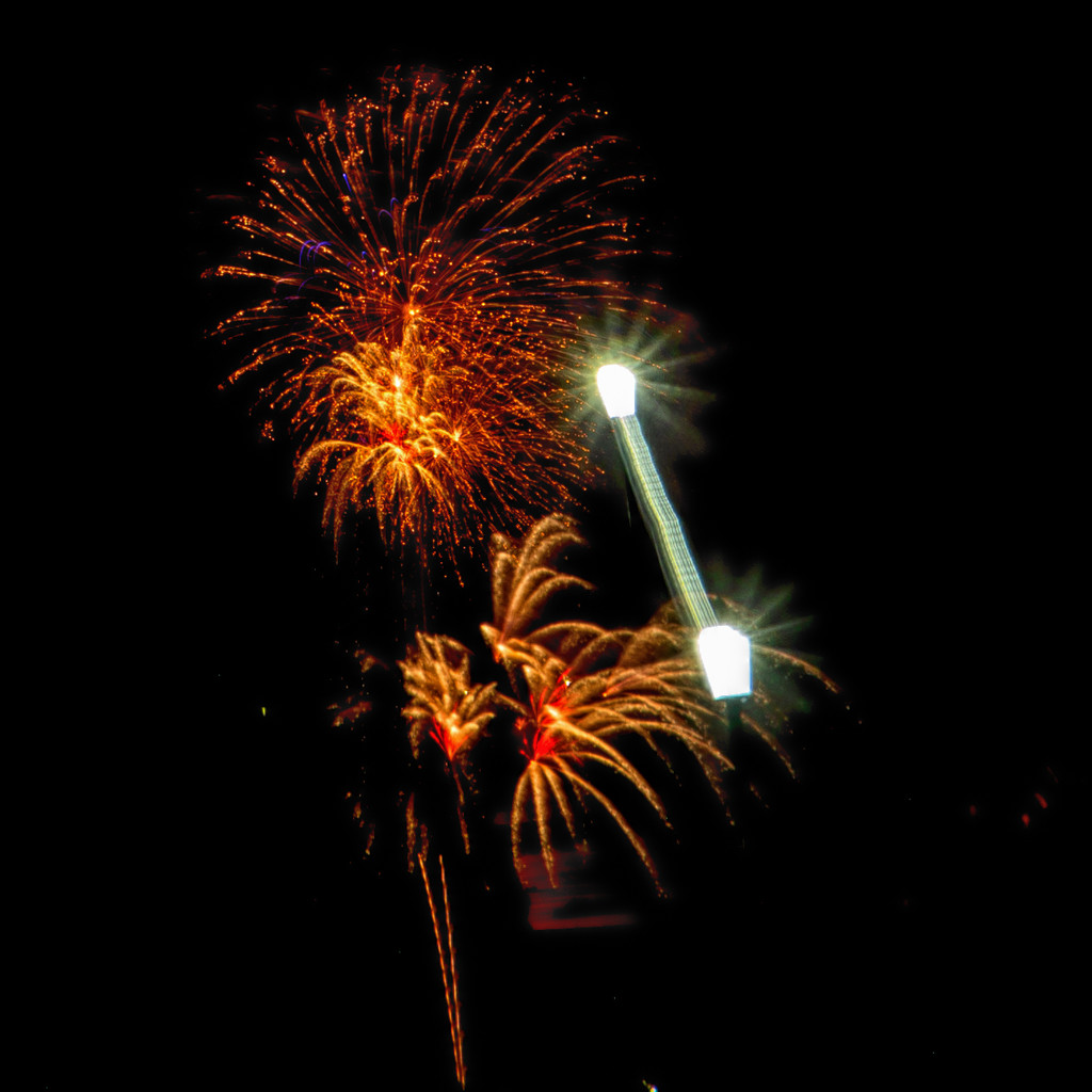 Midnight fireworks 2 by pamknowler