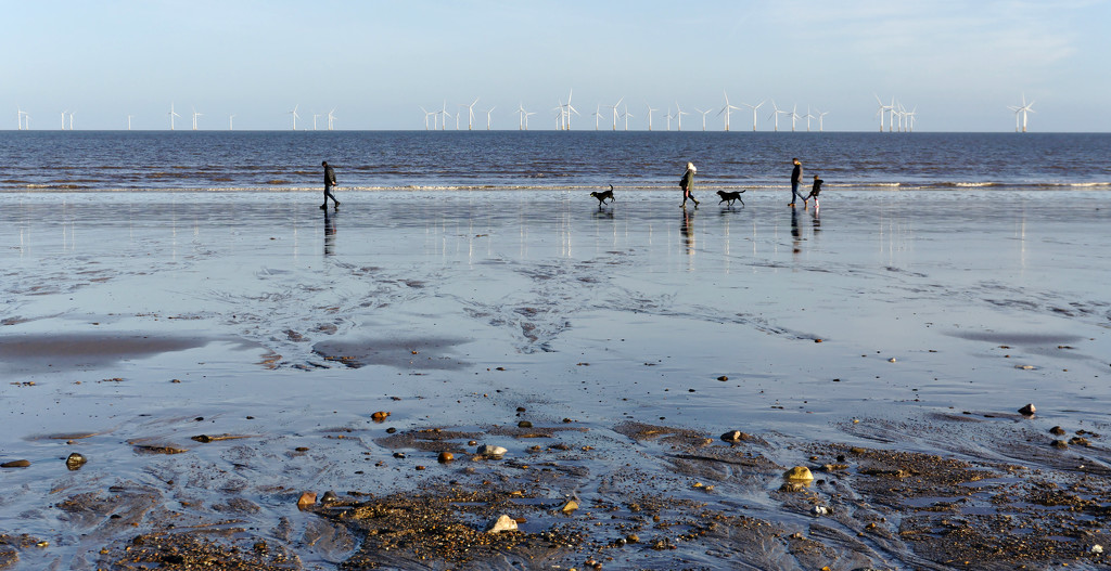 Lowry People and Dogs on the East Coast by phil_howcroft