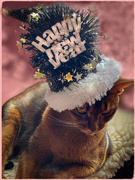 1st Jan 2020 - Happy New Year from Merry Mischief