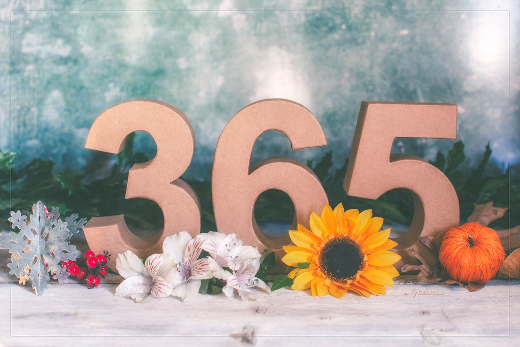 Here's To The Next 365 by lyndemc