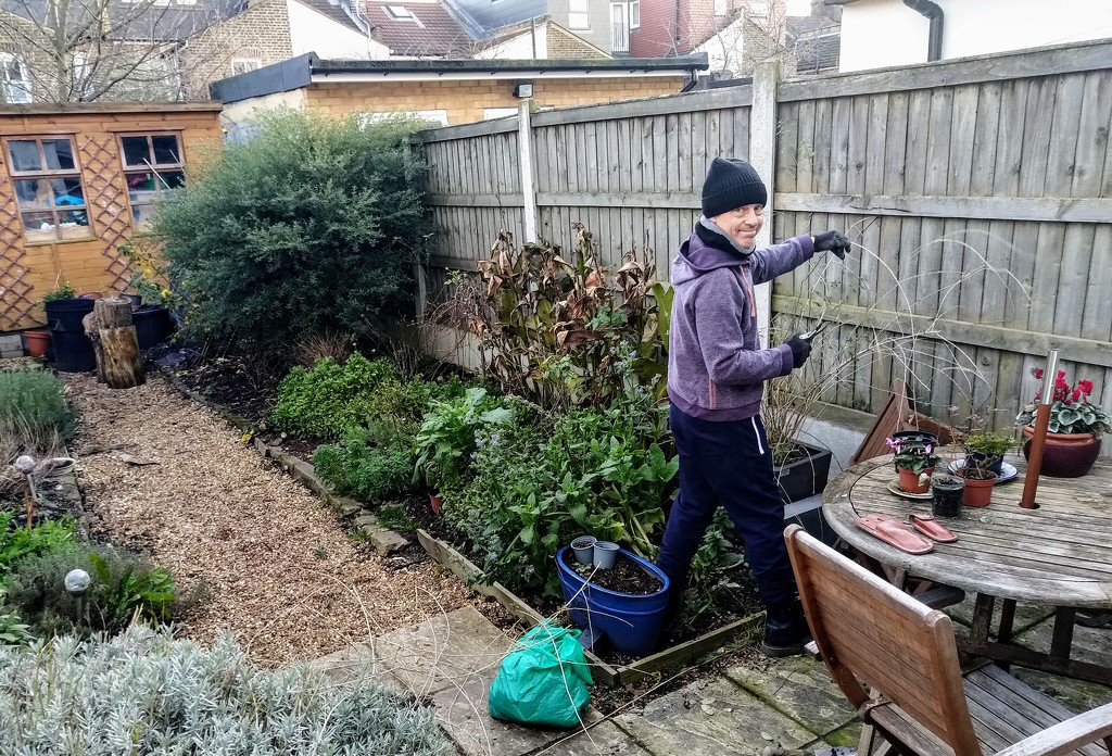 Getting out into the garden by boxplayer