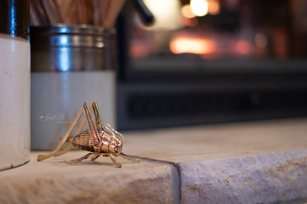 The Cricket On The Hearth by janetb