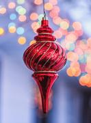 30th Dec 2019 - outdoor ornament