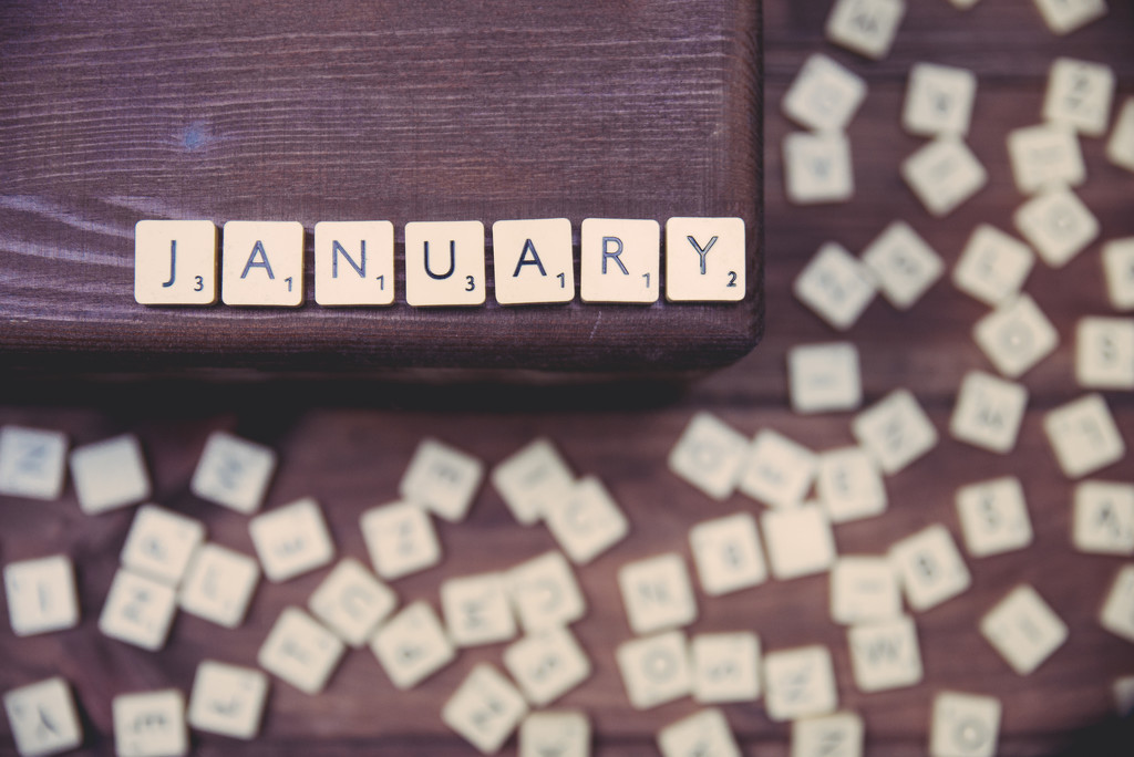 January by panoramic_eyes