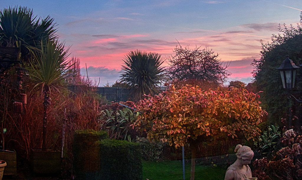 Looking Down The Garden on a Winters Morning. by tonygig