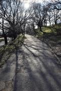 26th Dec 2019 - Walk to Gellér Hill ....