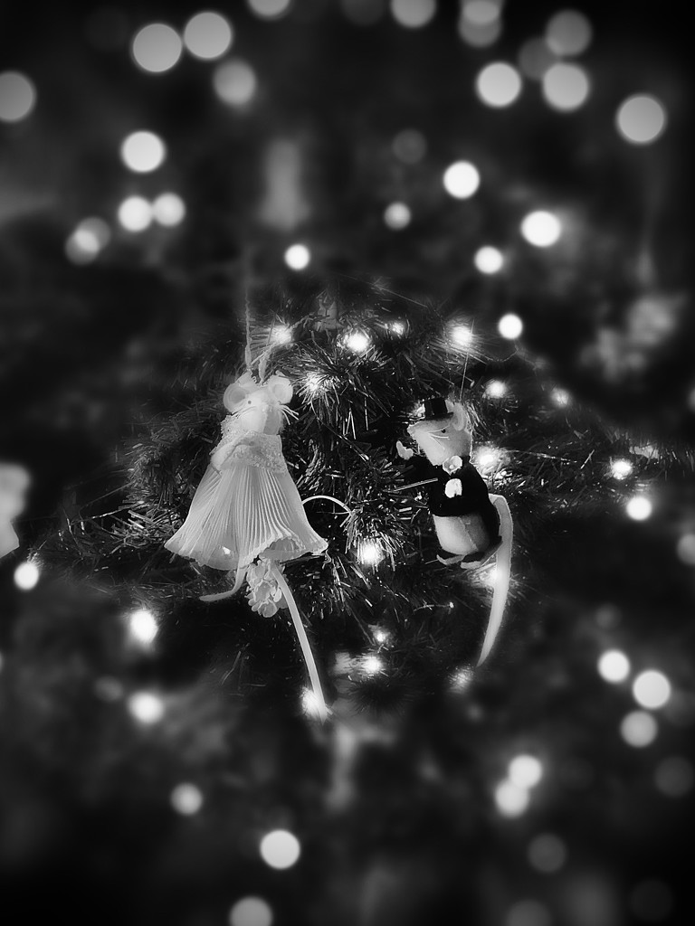 Christmas mice by vankrey