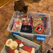 2nd Jan 2020 - Helping pack up Christmas