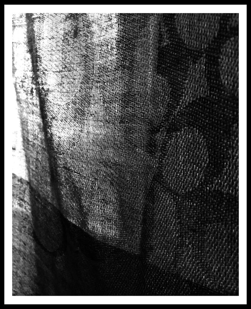bw-48 #2 by mcsiegle