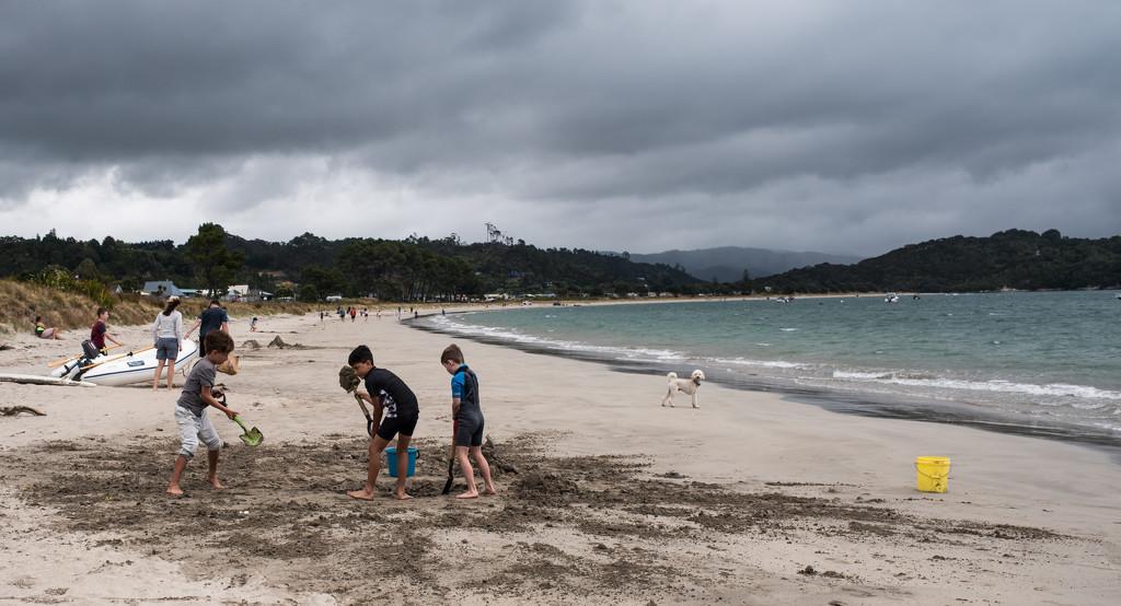 Beach life by brigette