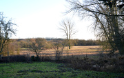 3rd Jan 2020 - Lower Orchard and Marsh