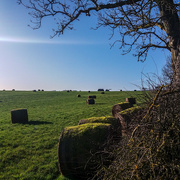 3rd Jan 2020 - Nice day to get the bales in!