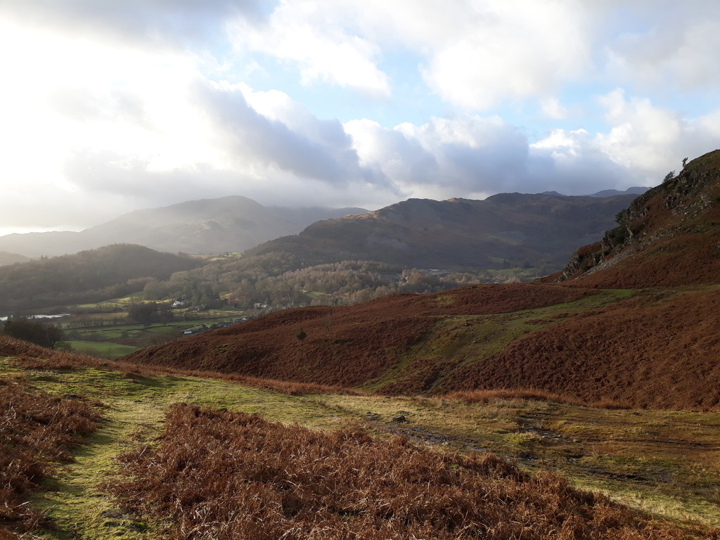 Loughrigg terrace  by pinkpaintpot