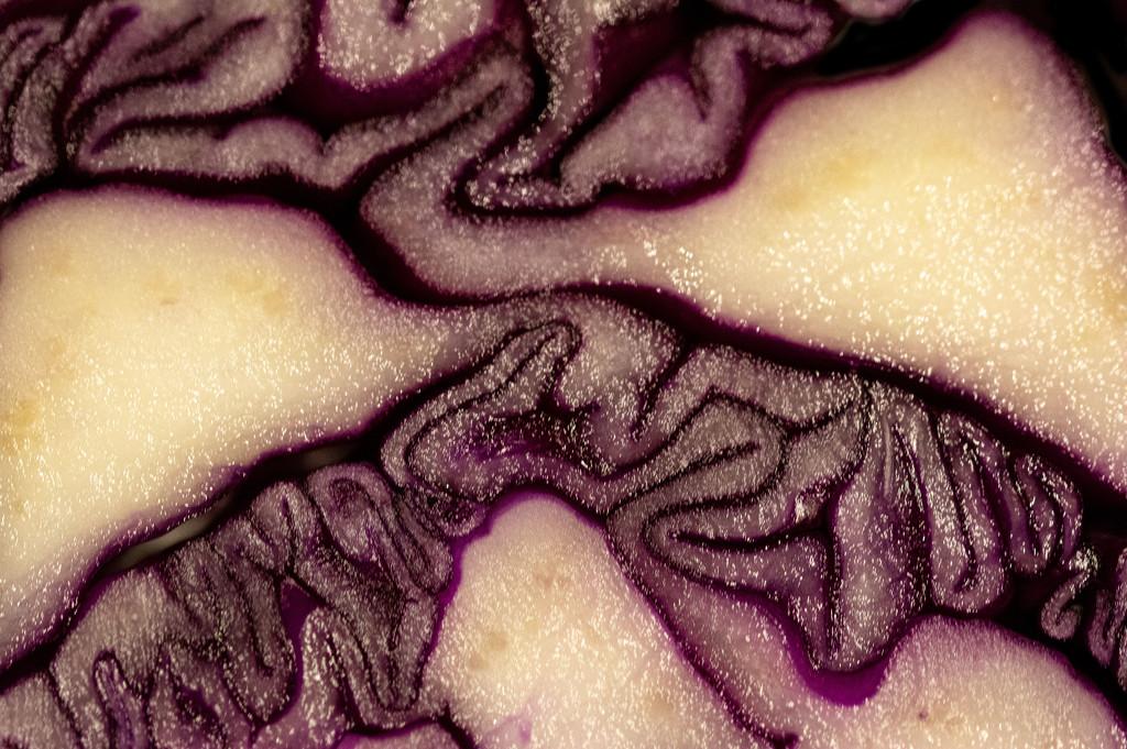 Purple Puzzle by vignouse