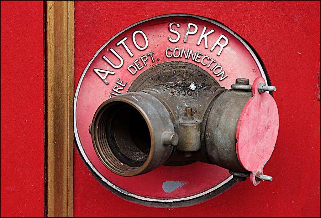 AUTO SPKR by olivetreeann