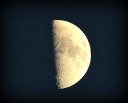 3rd Jan 2020 - Half Moon