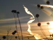 4th Jan 2020 - Airplane Vapor Trail at Sunset