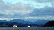 5th Jan 2020 - Pacific Northwest Scene