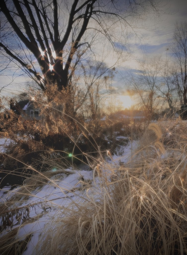 winter scene by vankrey