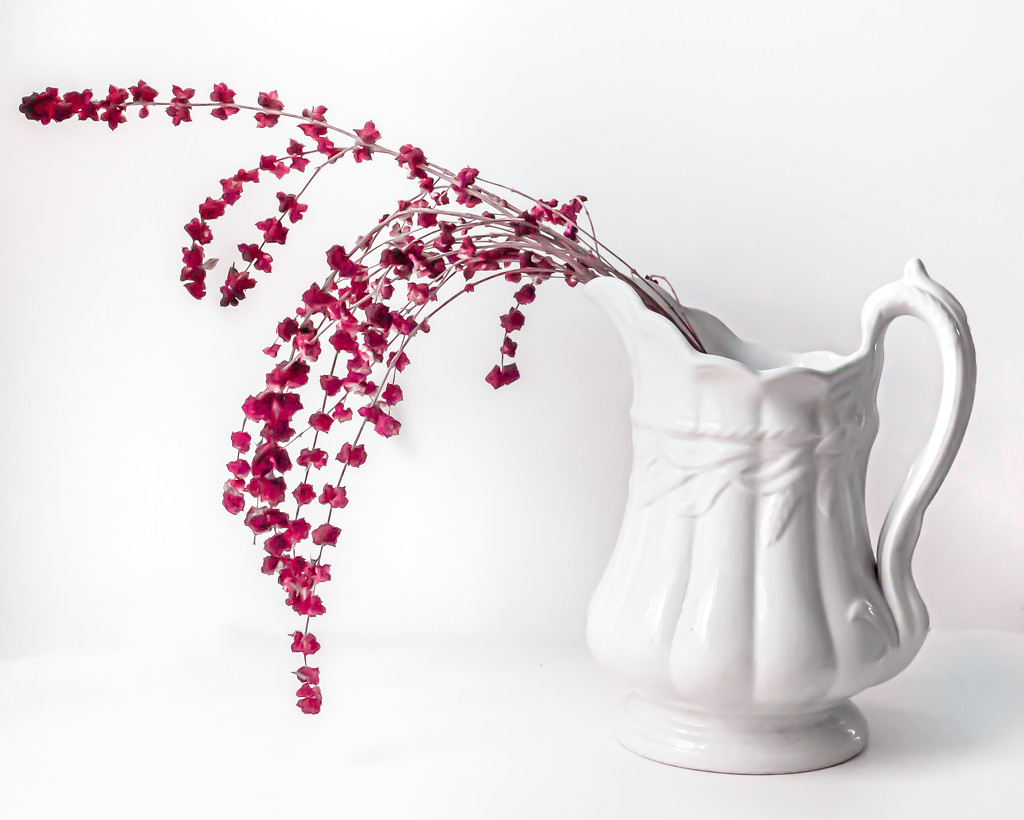 Red berries pouring by jernst1779