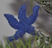 5th Jan 2020 - Homemade starfish ornament