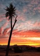 6th Jan 2020 - Sunday Sunset