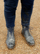 6th Jan 2020 - Puddle Jumping