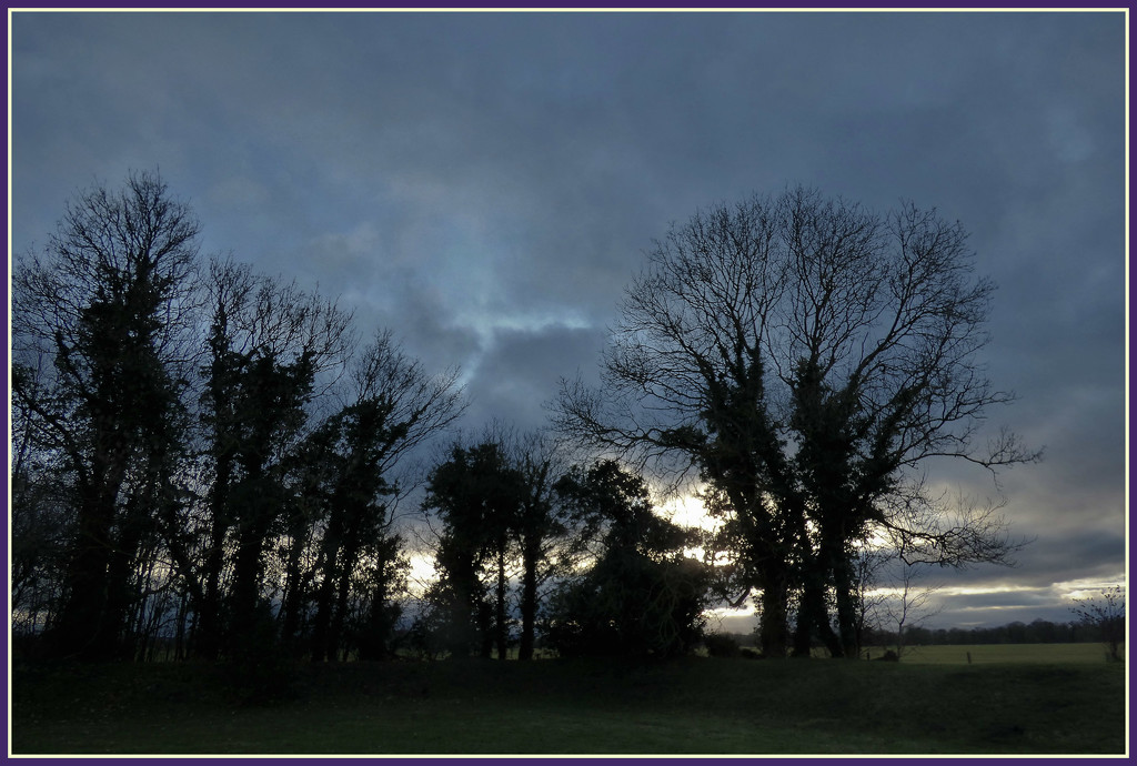 Silhouettes  by beryl