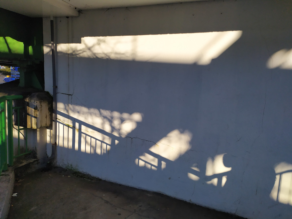Shadow play by dustyloup