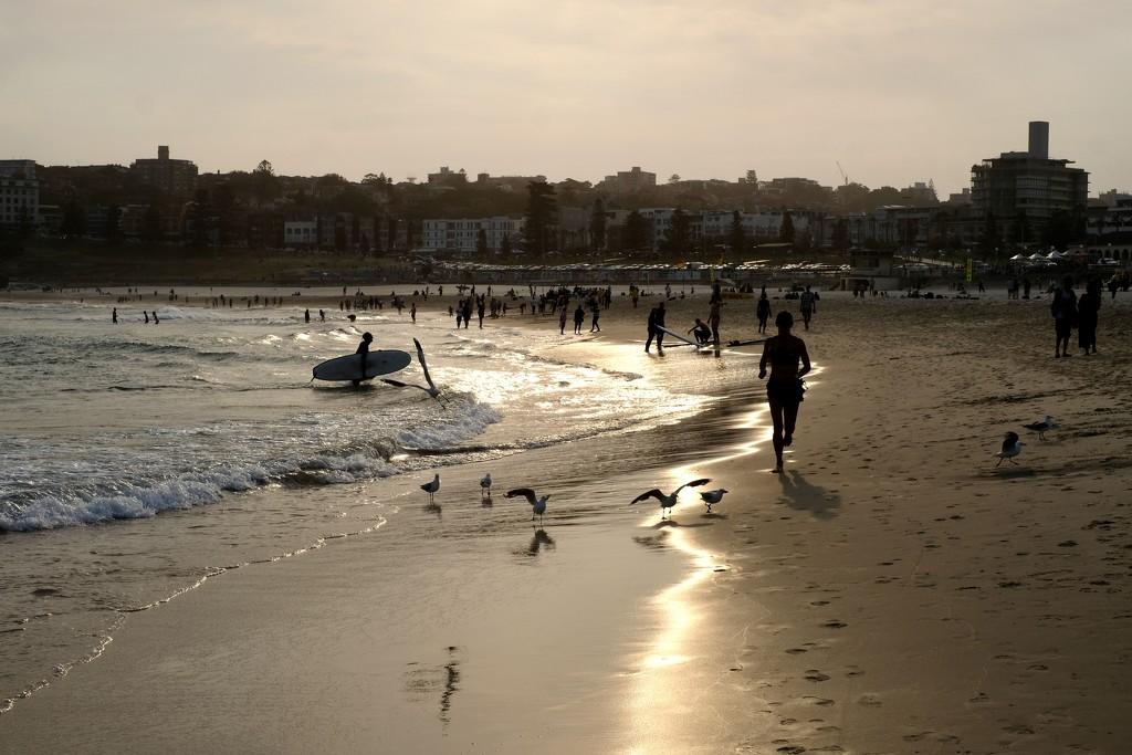 Bondi beach, Sydney  by vincent24