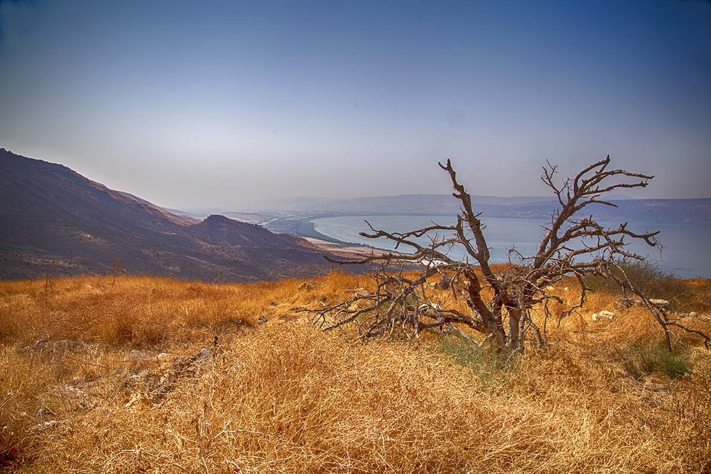 Galilee  by pdulis