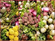 7th Jan 2020 - Indigenous Bush Bouquets