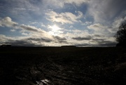 6th Jan 2020 - Lincolnshire Landscape