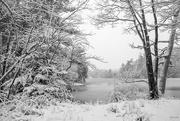 6th Jan 2020 - Lake view