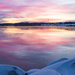 Rosy and Icy Morning by mgmurray
