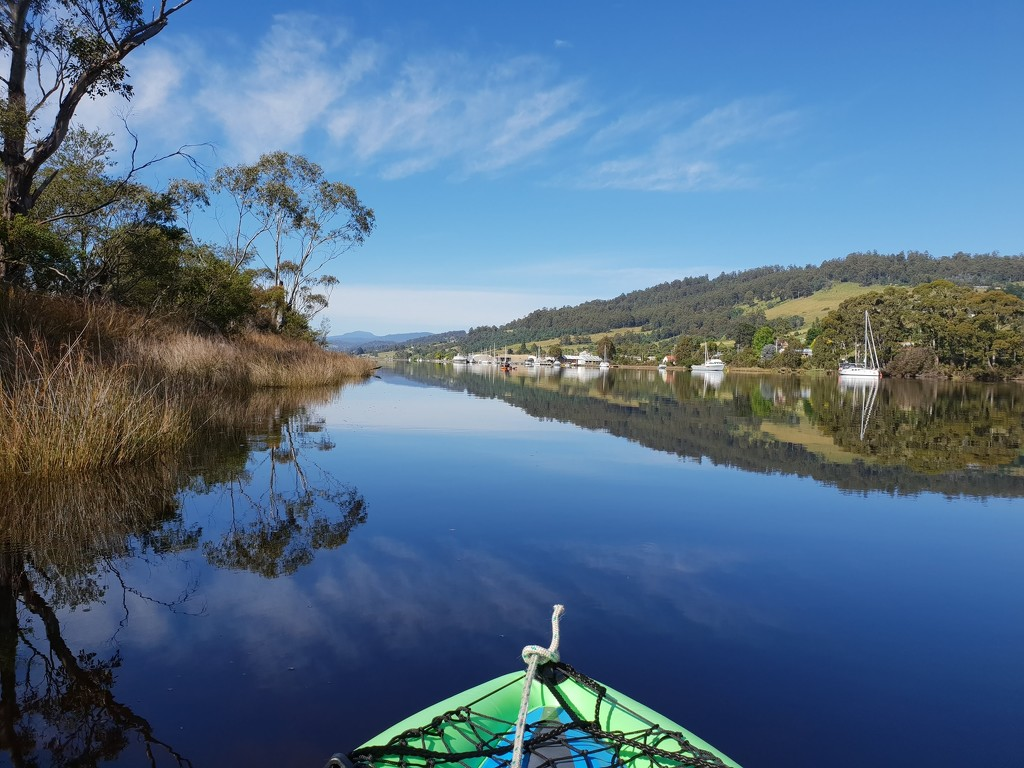 Kayaking on Huon River by gosia